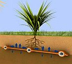 ECO RAIN® Root Zone Irrigation Mat